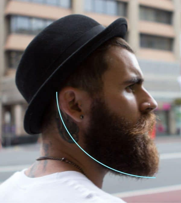 How To Trim Your Beard The Bearded Stag